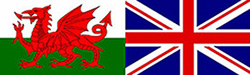 Combination Flag 250